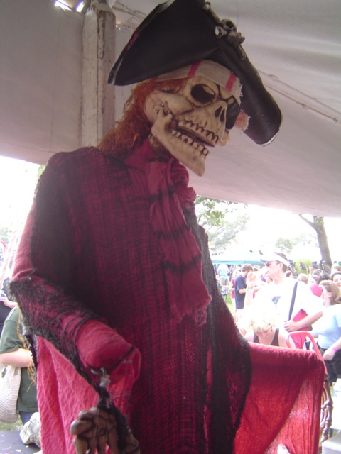 image of a pirate skeleton